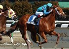 Primary Suspect winning the 2005 Toboggan Handicap.