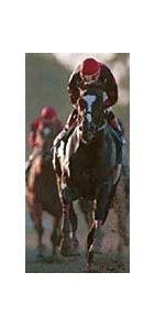 Artax winning the 1999 Forest Hills Handicap at Belmont Park.