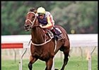 Sunline, winning the Apollo Stakes.