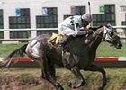 Give Praise, ridden by Laffit Pincay, Jr.