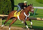 Mucho Macho Man under Ravij Maragh at Churchill Downs April 30