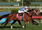 Bim Bam (inside) surged late to upset Interactif by a nose in the Hallandale Beach Stakes at Gulfstream Park.