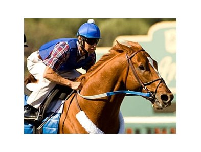 "Curlin<br><a target=""blank"" href=""http://www.bloodhorse.com/horse-racing/photo-store?ref=http%3A%2F%2Fpictopia.com%2Fperl%2Fgal%3Fprovider_id%3D368%26ptp_photo_id%3D6331803%26ref%3Dstory"">Order This Photo</a>"