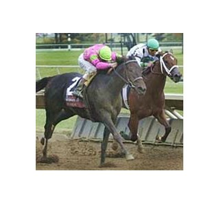 She's a Devil Due, winning the Alcibiades at Keeneland as a juvenile.