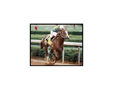 Colorful Tour wins the Razorback Handicap.