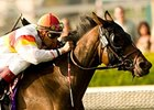 Bourbon Bay Returns in Turf Championship