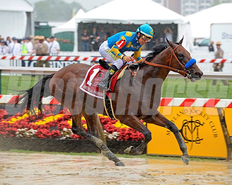 American Pharoah with Victor Espinoza wins the Preakness Stakes (gr. I) at Pimlico on May 16, 2015. Preakness 1 image 455 PHoto by Anne M. Eberhardt
