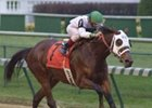 Breeding plans have not been finalized for champion Surfside, who has been retired from racing.