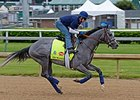 El Kabeir Did Not Go to Track May 1