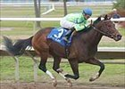 Fire Slam Roars in Lecomte; Louisiana Derby Next