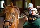 Boy's Wish Granted to Meet Smarty Jones