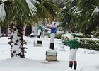Snow Cancels Fair Grounds Racing Dec. 11