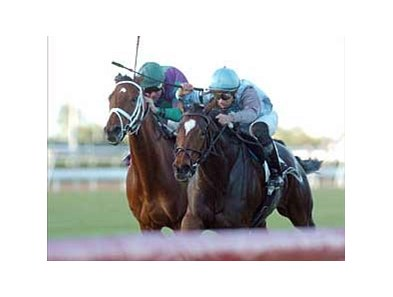 La Dolce Vita (left) has been declared the official winner of the Suwannee River Handicap with Green Girl disqualified.