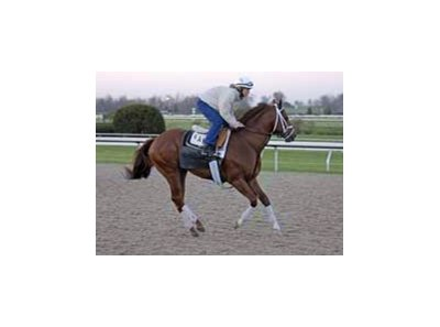 Cowtown Cat in sharp workout at Keeneland.