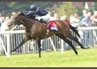 Hawk Wing, winning the 2002 Coral Eclipse Stakes.