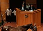 Fancy Prancer Sells For $200,000 at F-T