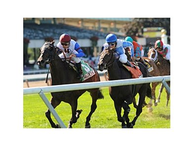 "Quiet Meadow (left) finished 2nd by a nose in the 2009 Noble Damsel. <br><a target=""blank"" href=""http://www.bloodhorse.com/horse-racing/photo-store?ref=http%3A%2F%2Fpictopia.com%2Fperl%2Fgal%3Fprovider_id%3D368%26ptp_photo_id%3D8494158%26ref%3Dstory"">Order This Photo</a>"