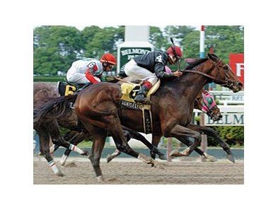 "2007 Peter Pan winner Sightseeing will stand at Richland Hills.<br><a target=""blank"" href=""http://www.bloodhorse.com/horse-racing/photo-store?ref=http%3A%2F%2Fpictopia.com%2Fperl%2Fgal%3Fprovider_id%3D368%26ptp_photo_id%3D1237962%26ref%3Dstory"">Order This Photo</a>"