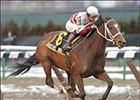 Austin's Mom rides to the win in the Affectionately Stakes, Saturday at Aqueduct.