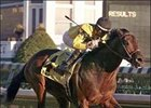 Premium Tap, shown winning the Clark Handicap, is ready to face Invasor and Discreet Cat in the 2007 World Cup.