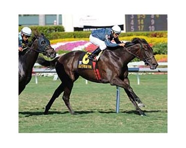 Gozzip Girl, winner of the Sands Point, is among 14 invitees to the American Oaks at Hollywood Park.