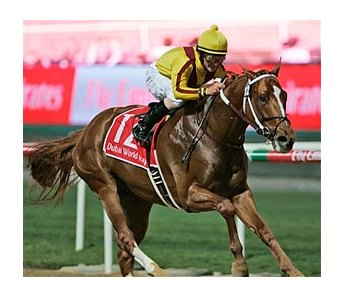 Curlin winning the Dubai World Cup (UAE-I).
