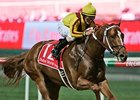 Curlin rolls to victory in the Dubai World Cup.
