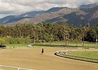 Santa Anita canceled racing Jan. 24 due to adverse weather conditions.