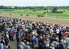 The crowd came out for the Belmont Stakes.