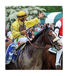 2012 Belmont Stakes winner Union Rags