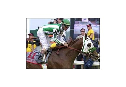 Preakness Stakes winner Point Given.