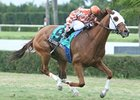 Presious Passion streaks towards his 2nd consecutive victory in the W.L. McKnight Handicap.