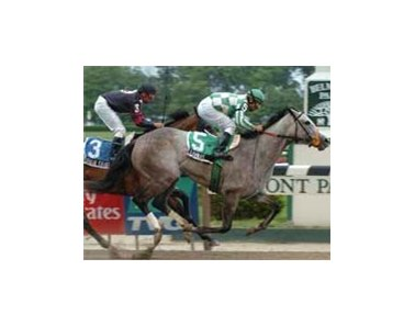 Teammate edges out Sugar Shake in the Shuvee Handicap.