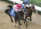 "Eight Belles next start could be in either the Kentucky Oaks (gr. I) or Kentucky Derby (gr. I). <br><a target=""blank"" href=""http://www.bloodhorse.com/horse-racing/photo-store?ref=http%3A%2F%2Fpictopia.com%2Fperl%2Fgal%3Fprovider_id%3D368%26ptp_photo_id%3D3918866%26ref%3Dstory"">Order This Photo</a>"