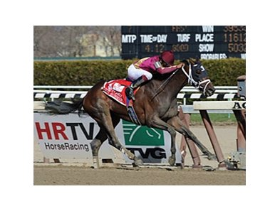 "Hot Summer powers home in the Comely at Aqueduct.<br><a target=""blank"" href=""http://www.bloodhorse.com/horse-racing/photo-store?ref=http%3A%2F%2Fpictopia.com%2Fperl%2Fgal%3Fprovider_id%3D368%26ptp_photo_id%3D9484161%26ref%3Dstory"">Order This Photo</a>"