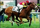 Quiet Resolve winning the 2001 Dixie Stakes at Pimlico Race Course.