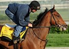 Homeboykris breezed a half-mile in :48 2/5 at Churchill Downs April 28.