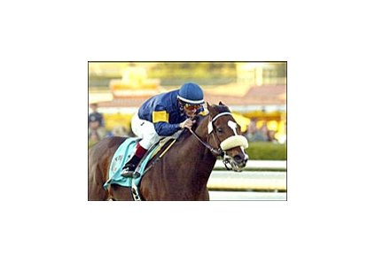 Redattore, with Alex Solis aboard, runs to victory in the San Gabriel Handicap, Sunday at Santa Anita.