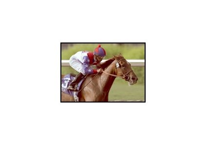 Azeri, shown winning the 2002 running of the Clement L. Hirsch Handicap, carries on the legacy of breeder Allen Paulson.
