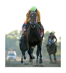 "My Miss Aurelia draws away from the field to win the Frizette.<br><a target=""blank"" href=""http://www.bloodhorse.com/horse-racing/photo-store?ref=http%3A%2F%2Fpictopia.com%2Fperl%2Fgal%3Fprovider_id%3D368%26ptp_photo_id%3D9701150%26ref%3Dstory"">Order This Photo</a>"