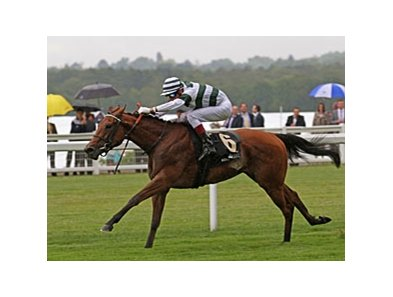 "Immortal Verse flies home to win the Coronation Stakes.<br><a target=""blank"" href=""http://www.bloodhorse.com/horse-racing/photo-store?ref=http%3A%2F%2Fpictopia.com%2Fperl%2Fgal%3Fprovider_id%3D368%26ptp_photo_id%3D9568565%26ref%3Dstory"">Order This Photo</a>"