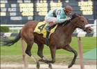 2004 Kentucky Derby contender Birdstone won the Champagne Stakes.
