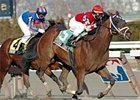 Saratoga County, felled by laminitis, shown here winning last year's Gotham.
