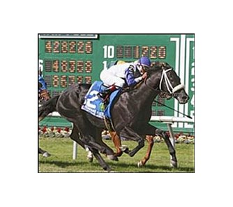 Request for Parole, shown winning the 2004 United Nations has been retired