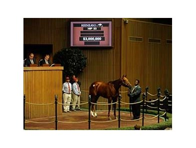 Hystericalady in the Keeneland sales ring Nov. 3.