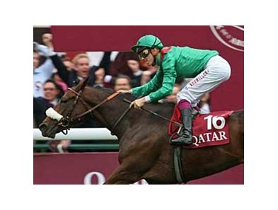 Zarkava captured the Arc de Triomphe in what would be her final race.