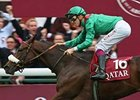 Zarkava Second in Timeform Rating
