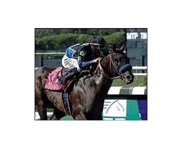Taste of Paradise tastes victory in the Vosburgh.