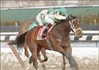 Ladyecho captures The Dearly Precious Stakes at Aqueduct.
