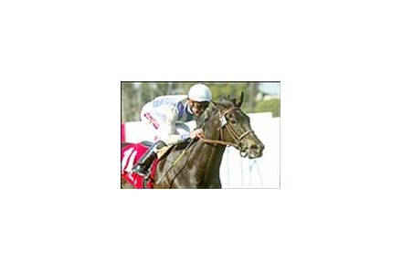 Dublino wins the Wilshire Handicap, Sunday at Hollywood Park.